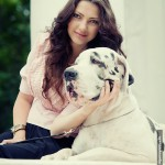 Фотосессия с собакой фэшн на пленере недорого съемка собак