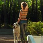 Фотосессия с собакой фэшн на пленэре съемка собак